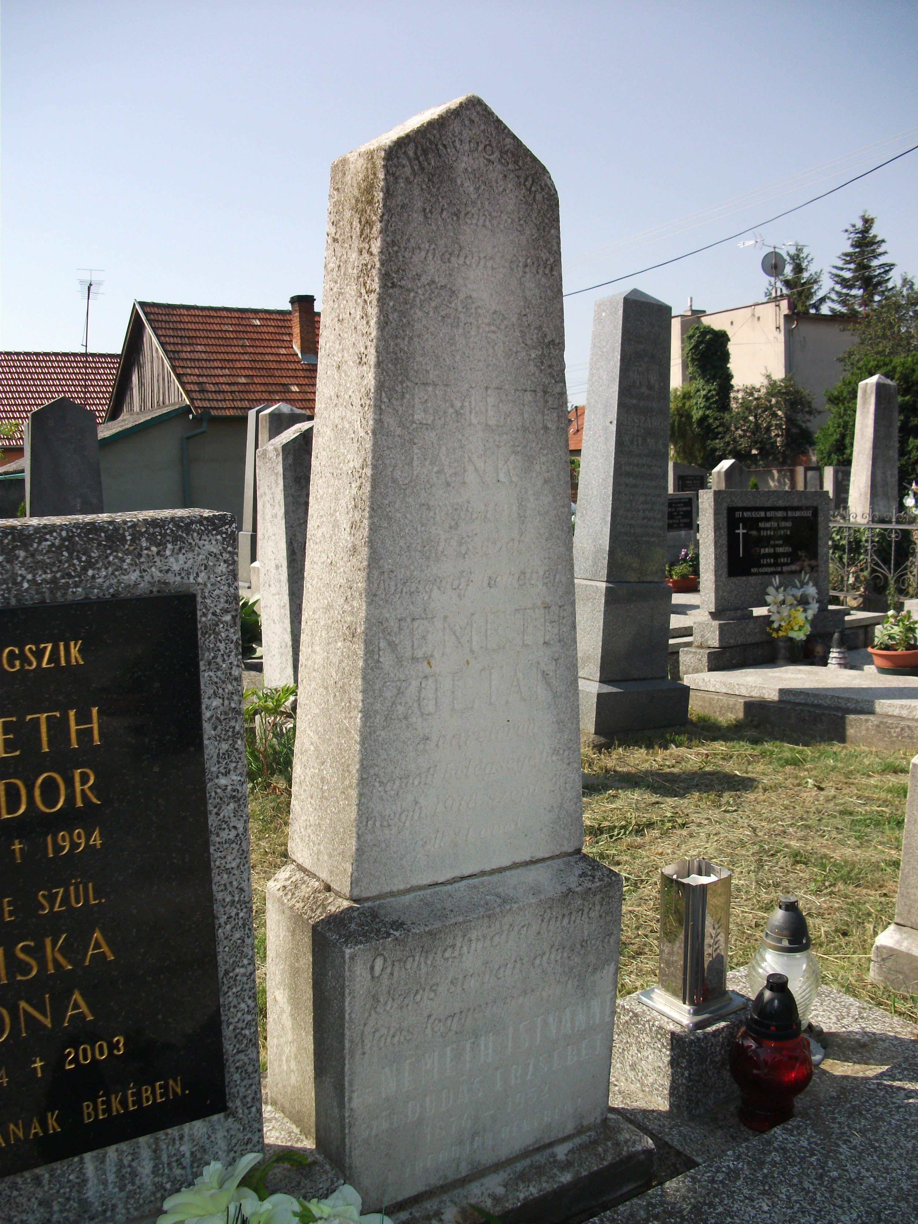 1. N+ęmeth Zolt+ín eml+ęk+ęt +Ĺrz+Ĺ s+şrk+Ĺ a taksonyi temet+Ĺben.JPG