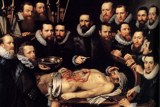 20130814-holttest-anatomia-illusztracio-michiel-jansz12.jpg