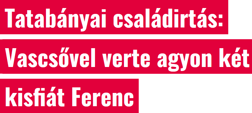 screenshot_2020-02-10_tatabanyai_csaladirtas_vascsovel_verte_agyon_ket_kisfiat_ferenc.png