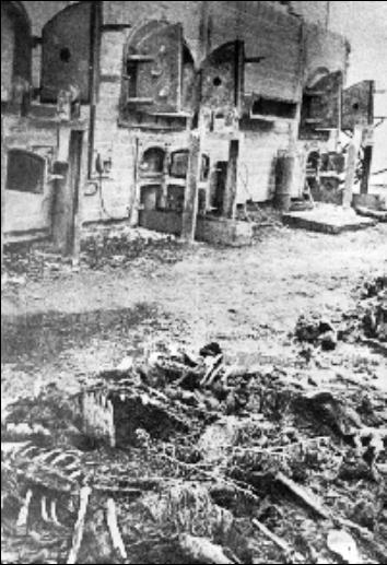 screenshot_2021-02-11_majdanek_extermination_camp_poland.png