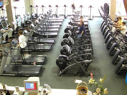 rows-of-cardio-equipment.jpg