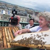 Méhek a Bécsi Operaházban