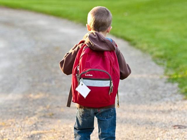 A tanár dolga nem az, hogy helyetted nevelje meg a gyereked