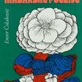 Enver Čolaković (1913–1976) műfordításai írói hagyatékának tükrében