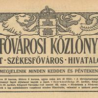 Egy elfeledett ifjú tehetség, Zágon Géza Vilmos