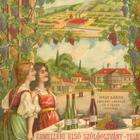 Szőlő-slow:Az érmelléki első szőlőoltványtelep 1903–1904. évi árjegyzéke