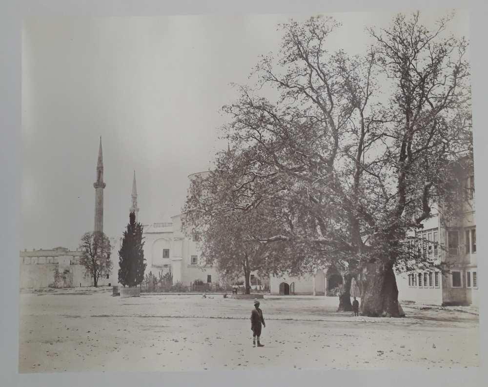 A janicsárok fája Konstantinápolyban. In. Constantinople 1869 (Dm 743) album