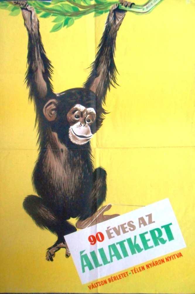 90 éves az Állatkert. Plakát. Grafikus: Köpeczi Bócz István (1919–1978) – Térkép-, Plakát- és Kisnyomtatványtár. Jelzet: PKG.1956/242