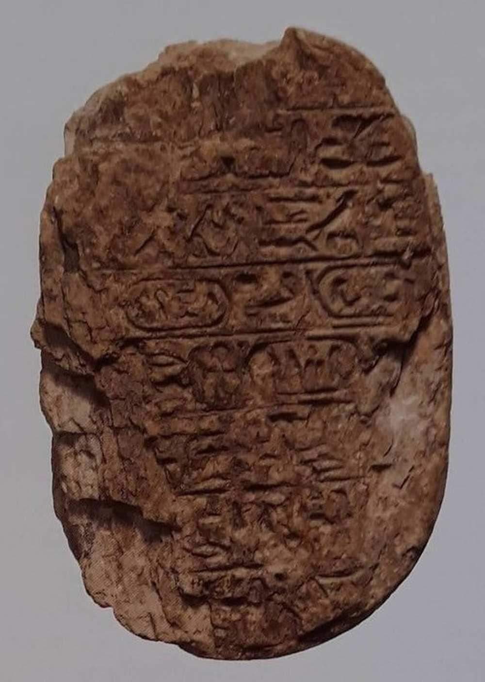 amenhotepskarab_3_opti.jpg