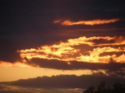 fire_dragon_cloud_nemzetikonyvtar.jpg