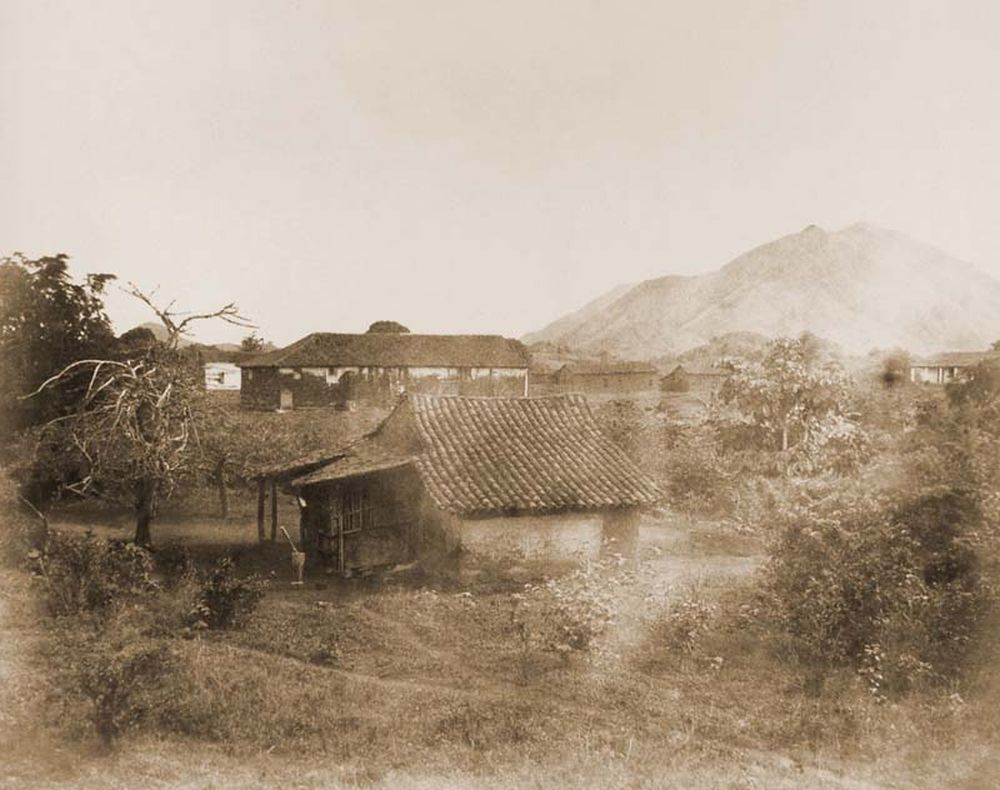 San Juan de los morros Totuma fával általános nézetből. (Venezuela). Jelzet: FTD 128 – Történeti Fénykép- és Videótár