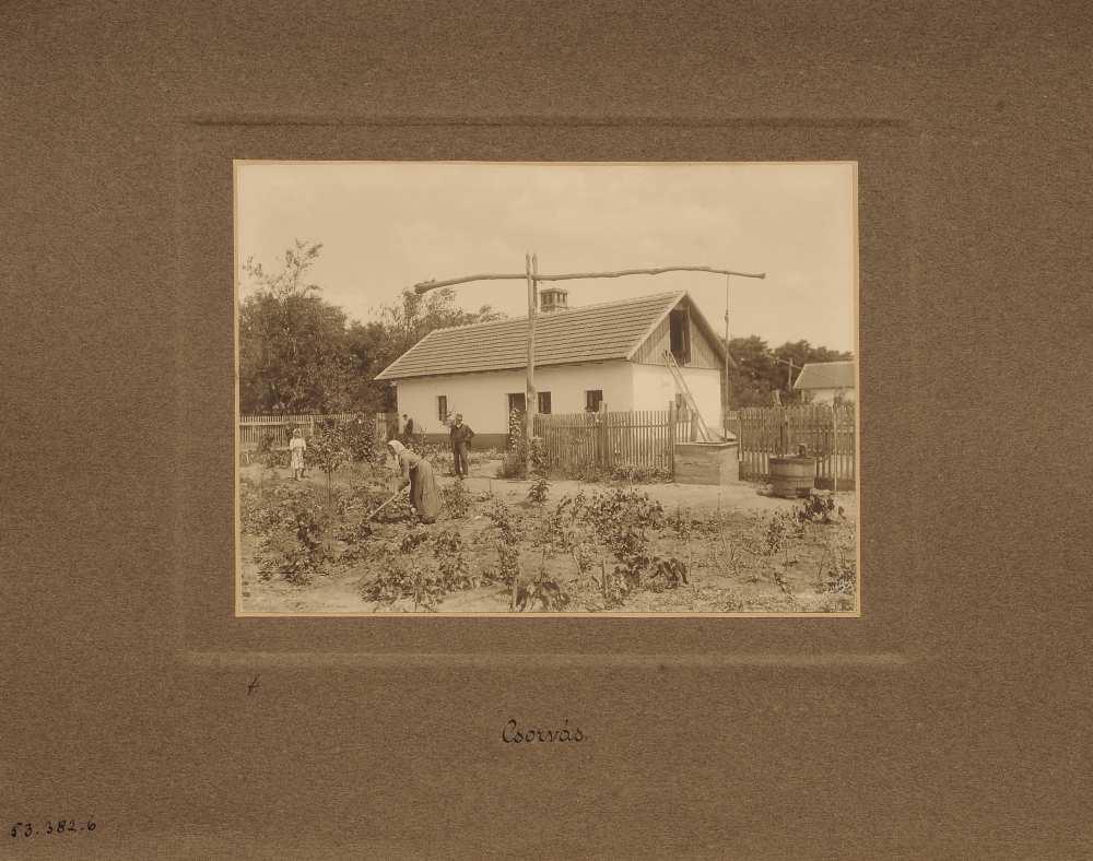 Mezőgazdasági munkásház konyhakerttel, Csorvás, Békés megye – Magyar Mezőgazdasági Múzeum. Ltsz.: VII. 11937