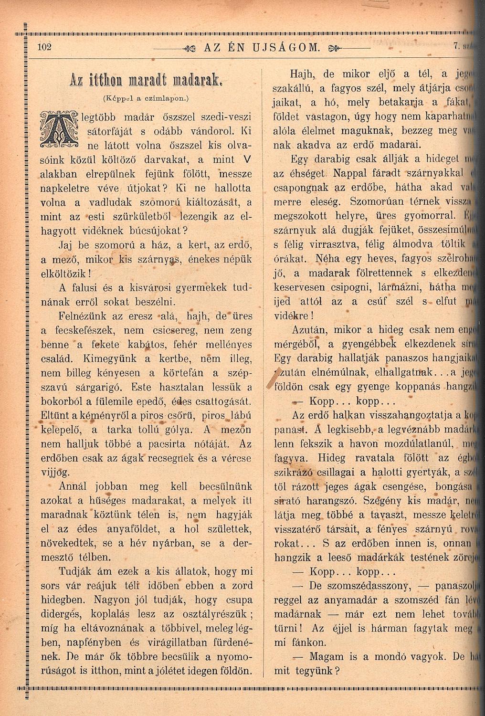 Az Én Ujságom. Képes gyermeklap, 1891. február 8. (II. évf. 7. sz.) 102. o. – Törzsgyűjtemény