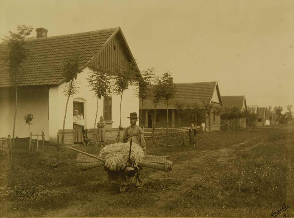 Szentesi utca kubikussal, Magyar Mezőgazdasági Múzeum. Ltsz.: VII. 1010