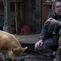 Újabb őrült film Nicolas Cage-től: bosszút áll az ellopott malacáért!
