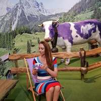 A lila tehén legyen velünk! Csoki, csoki és csoki!!!