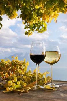 A szőlő leve számos lehetőséget rejt: az arcod számára is!
