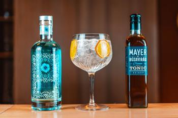 Amikor megtalálod az igazit: a Mayer szörp és a Búzavirág gin