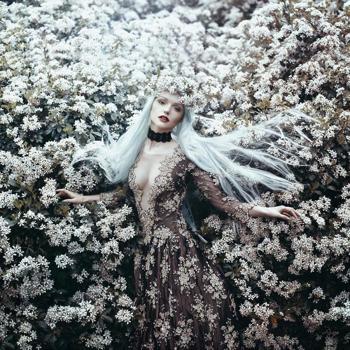 Fotózás virágokkal igen másképpen