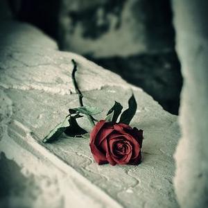 Covid, gyász, veszteség: hogyan segít egy gyászterapeuta?