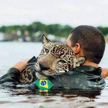 Te is tennél az Amazonas állataiért?
