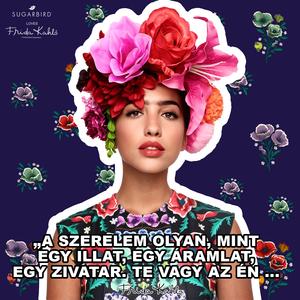 Sugarbird, Frida Kahlo, Schobert Lara, Gesztesi Panka és a női erő