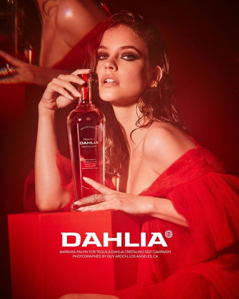 dahlia-tequila-campaign04.jpg