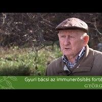 Gyuri bácsi az immunerősítés fortélyairól beszél