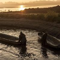 A Szellemi Kulturális Örökség Nemzeti jegyzékén a  Hagyományos halászat a Duna magyarországi alsó szakaszán