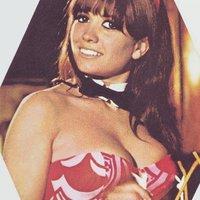 Egy Playboy nyuszi kézikönyve