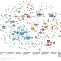 Genetika és hálózat: a betegségek más szemmel