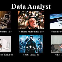 We are looking for a Junior Data Analyst