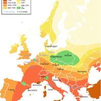Sertésinfluenza: a terjedés útja