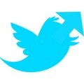A Twitter nyilai