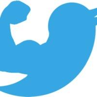 Online politikai harctér II. - Twitter