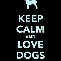 """Bizonyított: bekapcsoljuk a kutyák """"boldogság hormonját"""""""