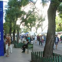 Magyar pásztorkutyák szombaton a Falk Art Fórumon