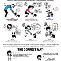 Hogyan ne üdvözölj egy kutyát - aranyos rajzok