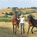 Életközepi válságra sportautó helyett lovat vesznek a nők