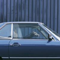 Az autóban hagyott kutya csöndessége - Martin Usborne fotókiállítása a londoni Little Black Galériában
