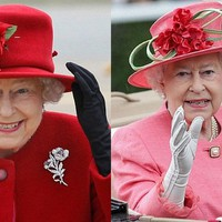A királynő kesztyűkészítője