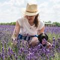 Botanikai örömszerzés - Amit a természettől kapok, azt adom tovább