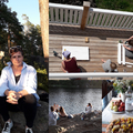 Két hétig állatmenhelyet építettem egy finn vegán farmon avagy önkénteskedés 40 felett