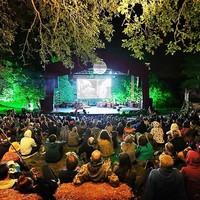 Wilderness - nagyvilági fesztiválozás az angol vadonban