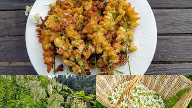Rántott akácvirág avagy Orsi a konyhában
