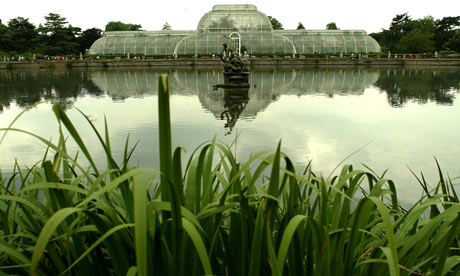 Palm-House---Kew-Gardens.-006.jpg