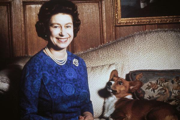 The-Queen's-Corgis-Susan.jpg