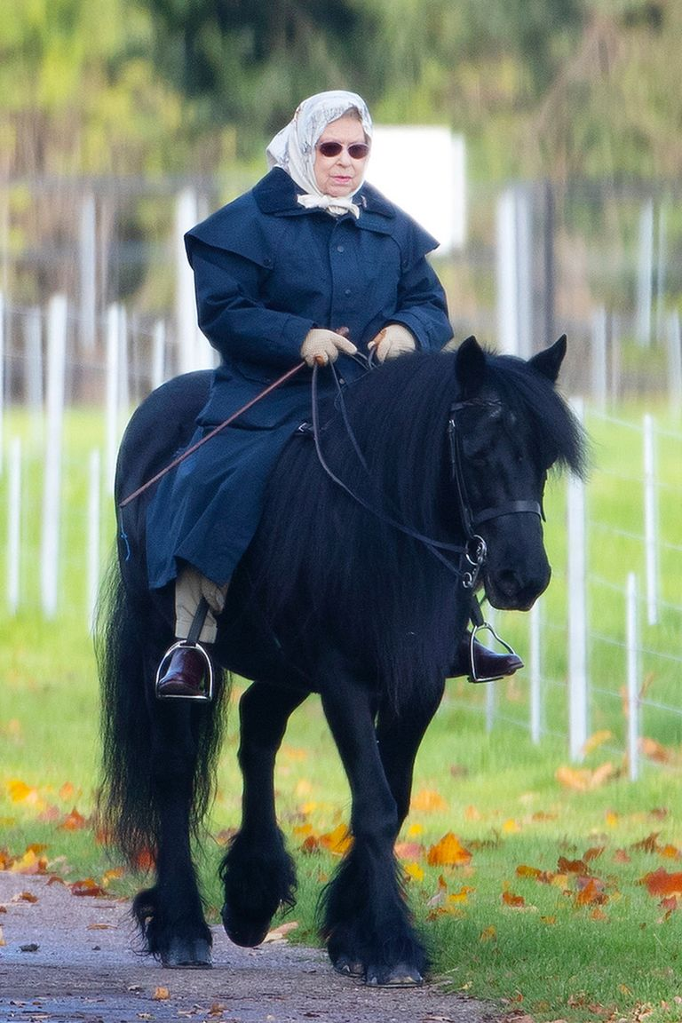 hbz-queen-elizabeth-riding-horse-lead-1574100835.jpg