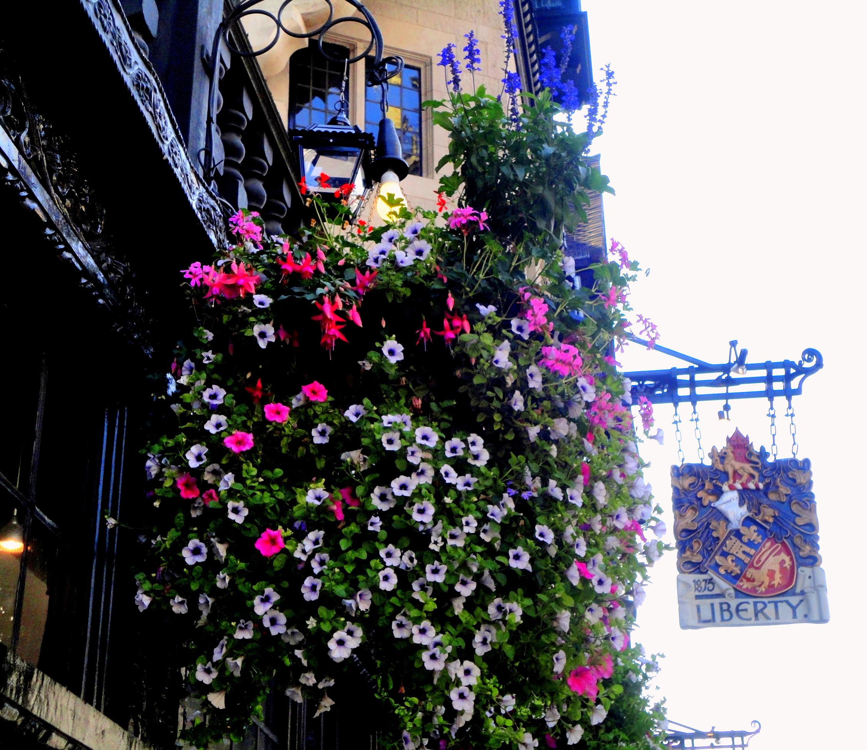 london_liberty.JPG