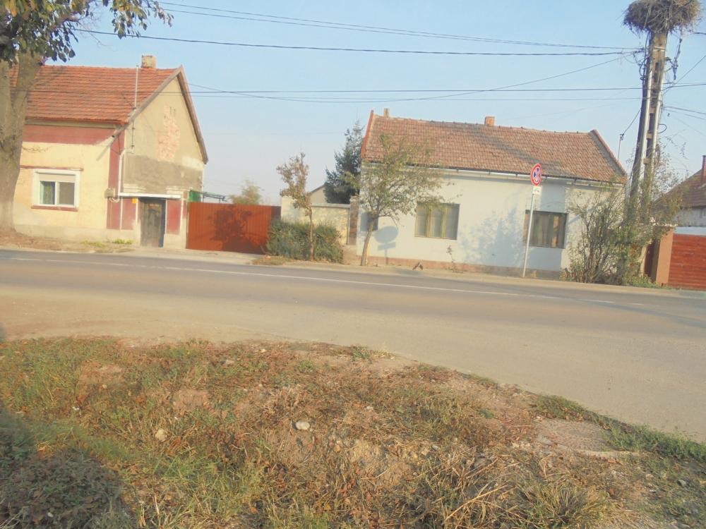 20191028_027_biharpuspoki_matyas_kiraly_utca.JPG